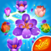 Blossom Blast Saga 72.0.1 .APK MOD Unlimited money Download for android